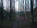 Kosvig - Kosvik - panoramio.jpg
