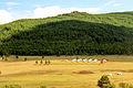 Krajobraz w Parku Narodowym Gorchi-Tereldż 06.JPG