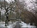 Krapkowice - 22.03.2013 - panoramio.jpg