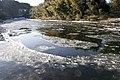 Kuji River 36.jpg