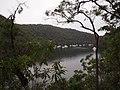 Kuring-gai Chase Road - panoramio.jpg