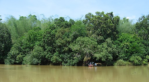 Kuruva Island