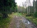 Līksna Parish, LV-5456, Latvia - panoramio (5).jpg