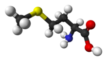 Ball-and-stick model of the L-isomer