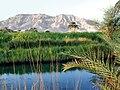 La montagne de Thèbes (Egypte).jpg
