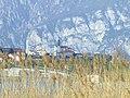 Lago di Annone - panoramio - Massimo Roselli (7).jpg