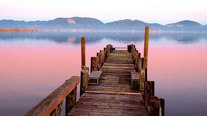 Lago di Massaciuccoli - Torre del Lago Puccini.jpg