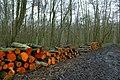 Landschap De Stroopers te Kemzeke - 372174 - onroerenderfgoed.jpg