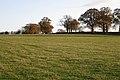 Lane by a field east of Bulloak Farm - geograph.org.uk - 1589289.jpg
