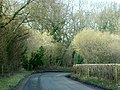 Lane to West Grimstead - geograph.org.uk - 1184857.jpg