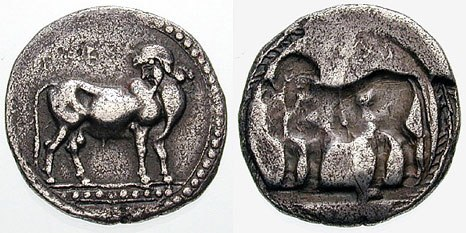 Obverse and reverse of a coin from Laüs