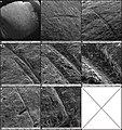 Lapa do Santo - Sepultamento 05 - Microscopia Eletronica de Varredura MEV Femur Direito.jpg