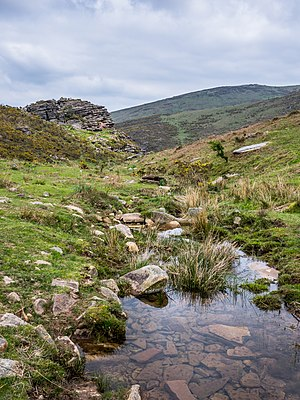 Stream in the Larrun area, Basque Country, France
