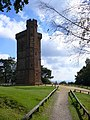 Leith Hill Tower from the North-west - geograph.org.uk - 575568.jpg