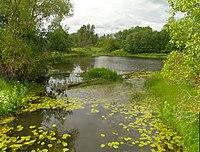 Leiva jõgi-Raasiku vald.jpg