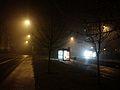 Leonarda Poznan night.jpg