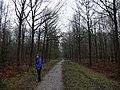 Liesbos Breda P1050658.JPG