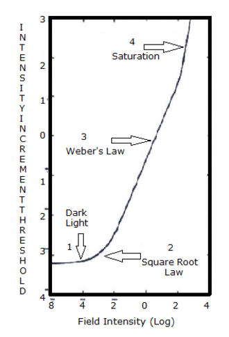 Adaptation (eye) - Schematic of the increment threshold curve of the rod system