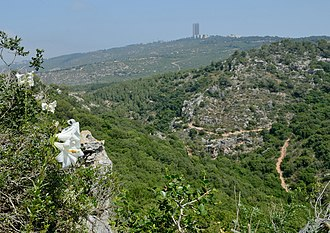 Mount Carmel - University of Haifa atop Mount Carmel