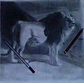 Lionarts.jpg