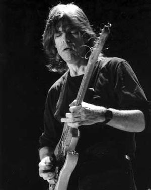 Mike Stern - Mike Stern at the Liri Blues Festival, Italy, in 1998