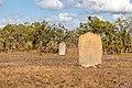 Litchfield National Park (AU), Magnetic Termite Mounds -- 2019 -- 3725.jpg