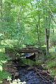 Little Wapwallopen Creek in its upper reaches looking upstream.JPG