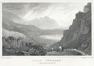 Llyn Gwynant: Caernarvonshire