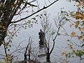 Loch Rannoch, Fishing (1503776589).jpg