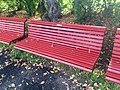 Long shot of the bench (OpenBenches 8791-1).jpg