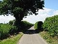Looking W along Ferne Lane - geograph.org.uk - 871217.jpg