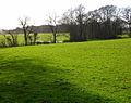 Low Weald Landscape - geograph.org.uk - 352689.jpg