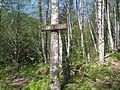 Lower Elliot Creek trail - Flickr - brewbooks.jpg