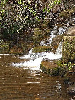 Lower Falls at Hareshaw Linn - geograph.org.uk - 1258835
