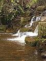 Lower Falls at Hareshaw Linn - geograph.org.uk - 1258835.jpg