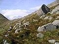Lower slopes of Meall nan Tri Tighearnan - geograph.org.uk - 247935.jpg