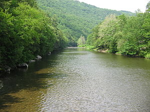 Loyalsock Creek - Loyalsock Creek from the Hillsgrove Covered Bridge