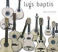 Luís Baptis em concerto.jpg