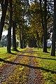 Luunja mõisa kalmistu 06.JPG