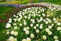 M^m Flores en el parque en la Haya - Creative Commons by gnuckx - panoramio (12).jpg