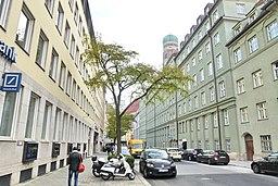 Löwengrube in München