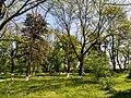 MD.ED.Brînzeni - parcul dendrologic din Brînzeni - apr 2018 - 08.jpg