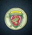 MSSG-31 Challenge Coin.jpg