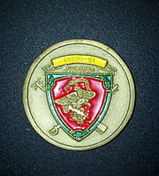 MSSG-31 Challenge Coin