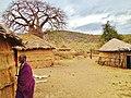 Maasai Land Tanzania - panoramio (7).jpg
