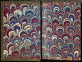 Marbled endpaper from Die Nachfolge Christi ed. Ludwig Donin (Vienna ca. 1875) 500ppi.jpg