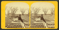 Marine barracks, Charlestown Navy Yard, from Robert N. Dennis collection of stereoscopic views.png