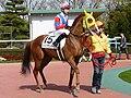 Masaaki-Minamida20090328.jpg