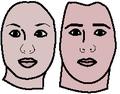 Masculine feminine face.png