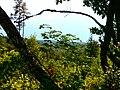 Medumi Parish, Latvia - panoramio (9).jpg
